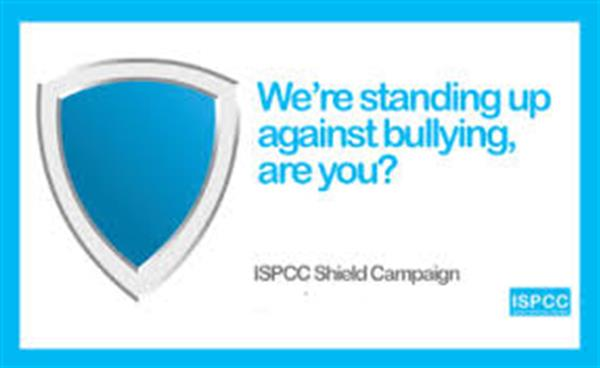 Shield Anti Bullying Flag
